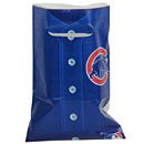 Chicago Cubs Loot Bag